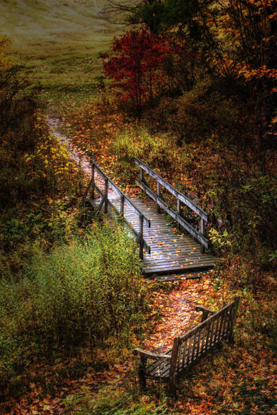 Beautiful Park Photograph - A Walk In The Park II by Tom Mc Nemar