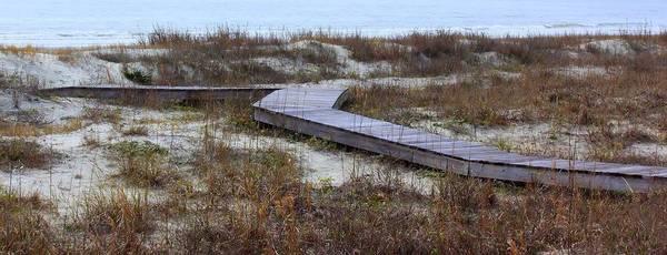 Kiawah Island Photograph - A Walk To The Beach by Rosanne Jordan