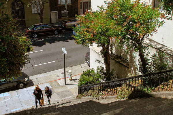 Photograph - A Walk Up Joice St Steps by Bonnie Follett