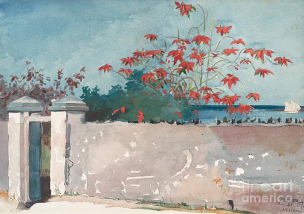 Wall Art - Painting - A Wall, Nassau, 1898 by Winslow Homer
