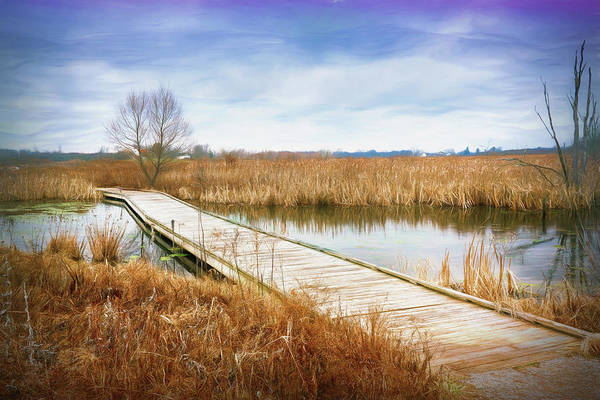 Walkway Wall Art - Photograph - A Warm Day In February by Tom Mc Nemar