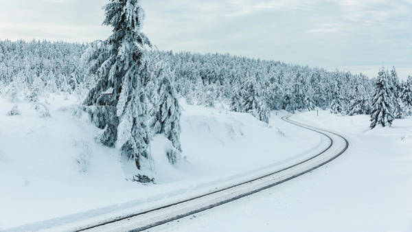 Photograph - A Way In The Magic Winter Wonderland by Andreas Levi