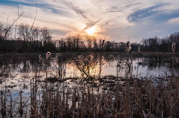 Wall Art - Photograph - A Wetlands Sunset by Kristopher Schoenleber