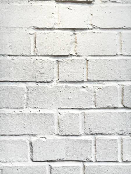 Wall Art - Photograph - A White Wall by Tom Gowanlock