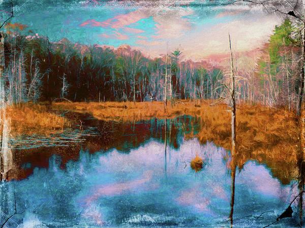 Digital Art - A Wilderness Marsh by Rusty R Smith