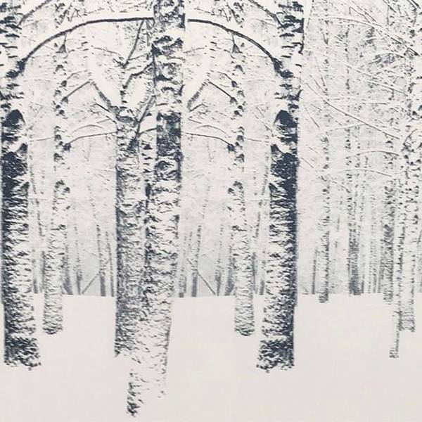 Wall Art - Photograph - A Winter ❄️ Tale. No Explanation by Gina Callaghan