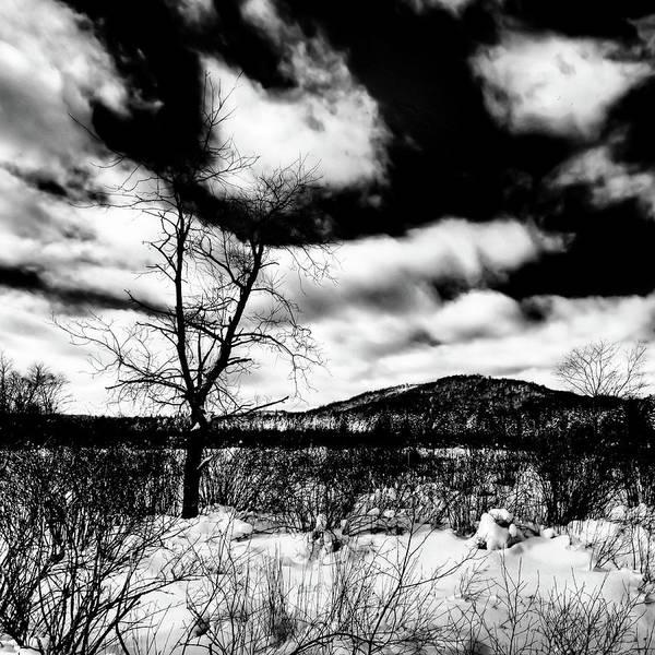 Photograph - A Winter Landscape by David Patterson