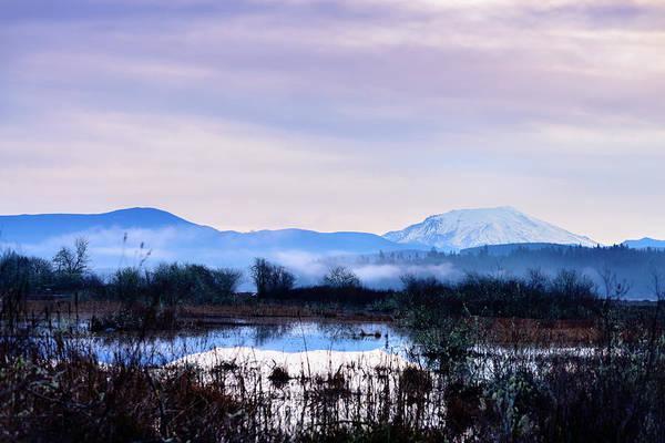 Photograph - A Winters Fog by Michael Scott