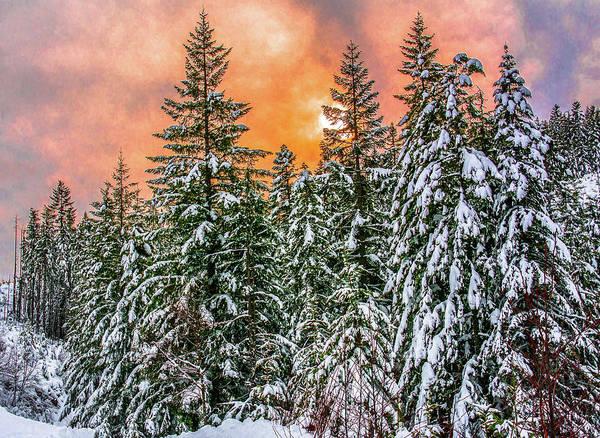 A Winters Sky Set Ablaze Art Print