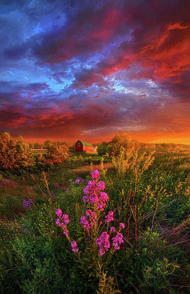 Wall Art - Photograph - A Wisconsin Story by Phil Koch