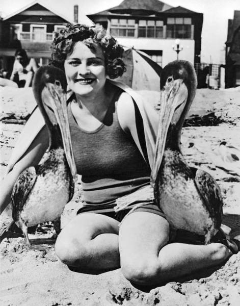 Wall Art - Photograph - A Woman And Her Pet Pelicans by Underwood Archives