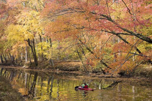 Chesapeake And Ohio Wall Art - Photograph - A Woman Kayaking Down The Chesapeake by Skip Brown