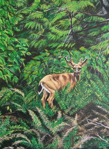 Painting - A Young Buck's Land by Sharon Duguay