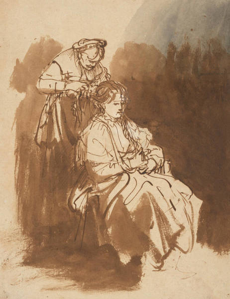 Drawing - A Young Woman Having Her Hair Braided by Rembrandt