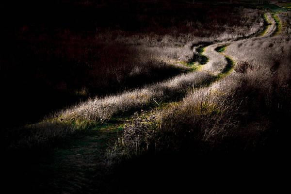 Photograph - The Way by Edgar Laureano