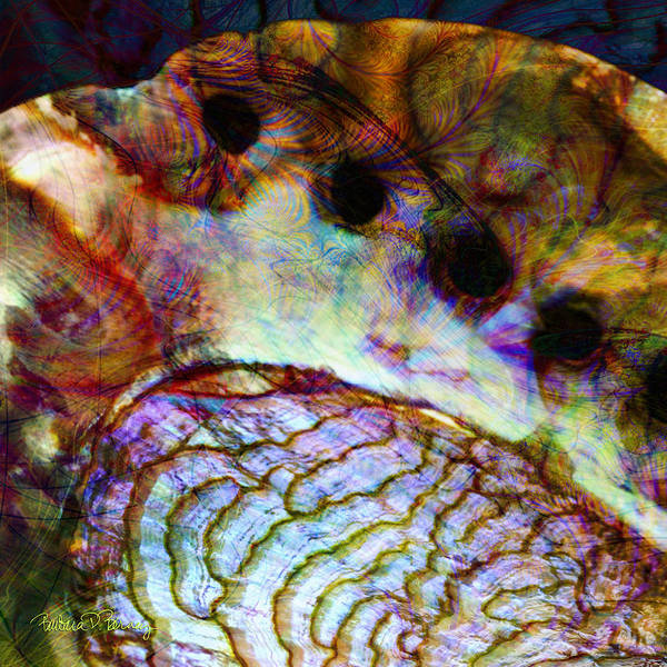 Digital Art - Abalone by Barbara Berney