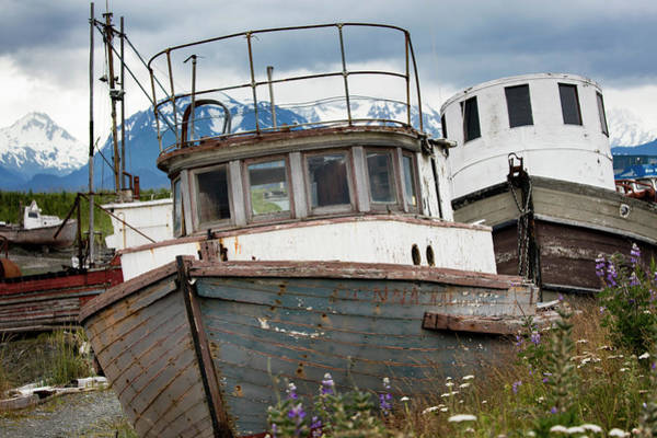 Photograph - Abandon Boat by Gloria Anderson