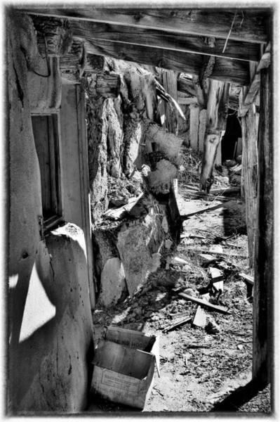 Photograph - Abandoned Adobe II by David Patterson