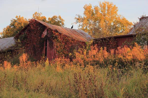 Photograph - Abandoned Barn by Angela Murdock