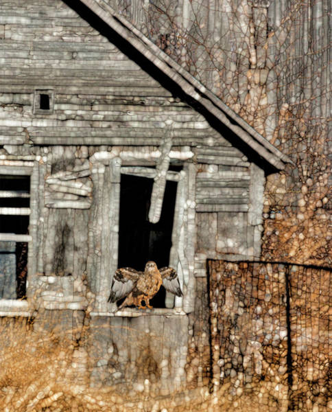 Porch Painting - Abandoned Barn by Jack Zulli