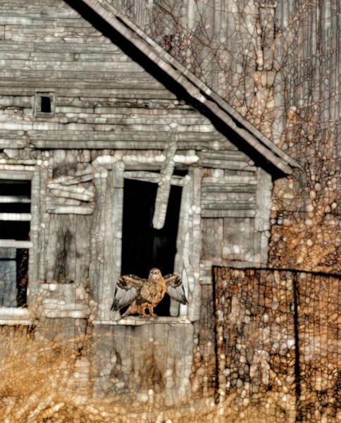Wall Art - Painting - Abandoned Barn by Jack Zulli
