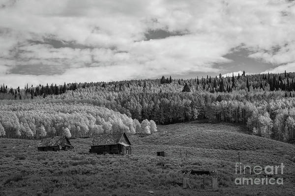 Wall Art - Photograph - Abandoned Cabin Along Ohio Pass Road Bw by Michael Ver Sprill