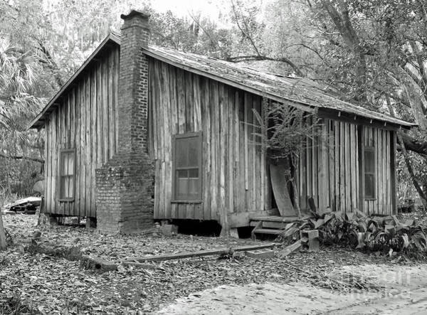 Photograph - Abandoned Cabin In The Woods by D Hackett