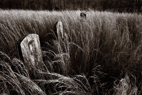 Wall Art - Photograph - Abandoned Cemetery Midwest by Steve Gadomski