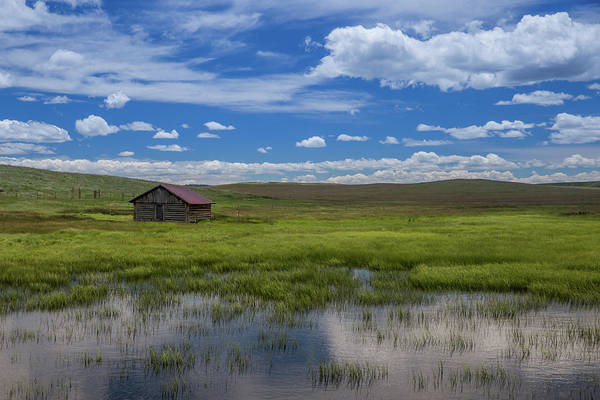 Wall Art - Photograph - Abandoned Colorado Cabin With Reflecting Pond by Bridget Calip