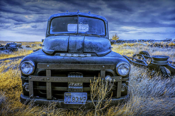 Photograph - Abandoned Dodge Truck In An Automobile Graveyard by Randall Nyhof