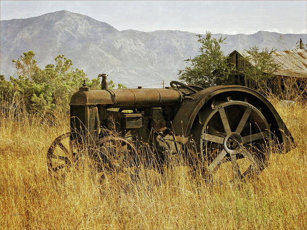 Photograph - Abandoned Fordson by David King