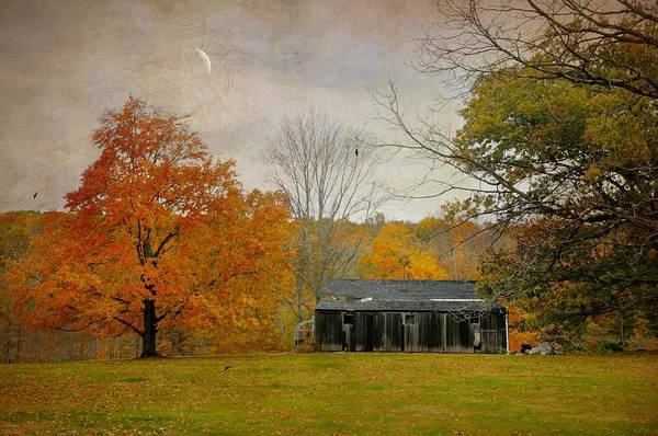 Cabin In The Woods Wall Art - Photograph - Abandoned Home by Diana Angstadt