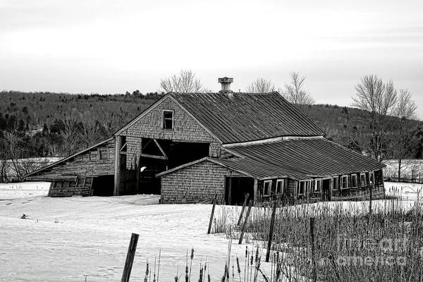 Photograph - Abandoned Maine Barn In Winter by Olivier Le Queinec