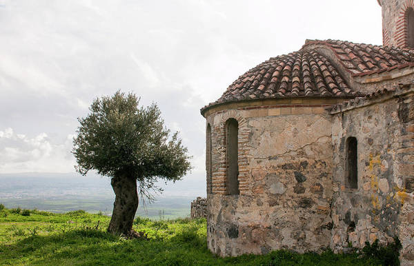 Outdoor Wall Art - Photograph - Abandoned Old Orthodox Christian Church And Olive Tree  by Michalakis Ppalis