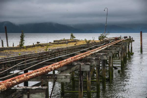 Photograph - Abandoned Pier by Robert Potts