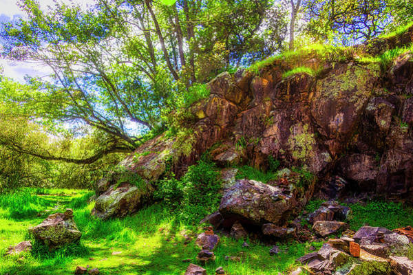 Wall Art - Photograph - Abandoned Quarry by Garry Gay