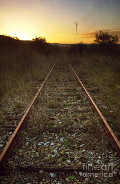 Wall Art - Photograph - Abandoned Railway by Carlos Caetano