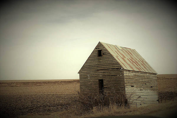 Wall Art - Photograph - Abandoned Shed II by Toni Grote