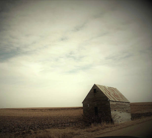 Wall Art - Photograph - Abandoned Shed by Toni Grote