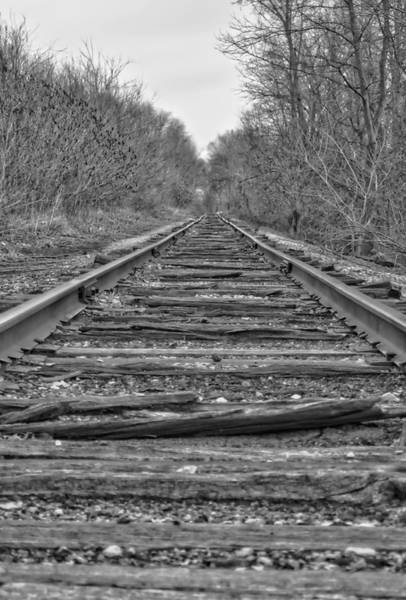 Photograph - Abandoned Tracks by Michael Colgate