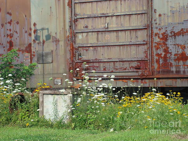 Return To Earth Photograph - Abandoned Train by B Rossitto