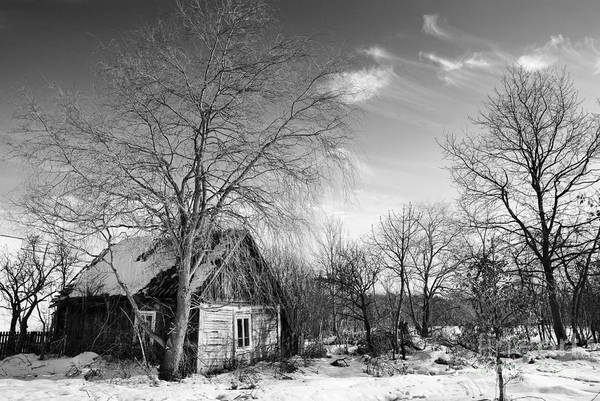 Wall Art - Photograph - Abandoned Wooden Shack In Winter by Arletta Cwalina