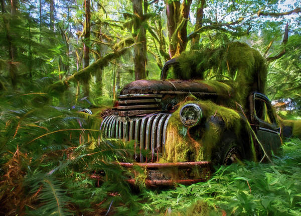 Photograph - Abandoned In Forest by Bill Posner