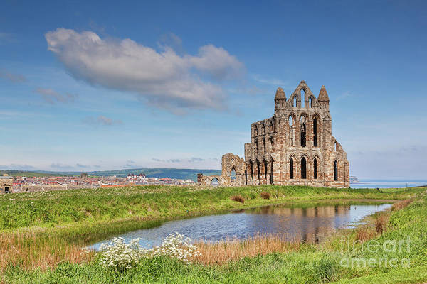Wall Art - Photograph - Abbey Glory by Colin and Linda McKie
