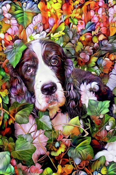 Mixed Media - Abbi The Bench English Springer Spaniel by Peggy Collins