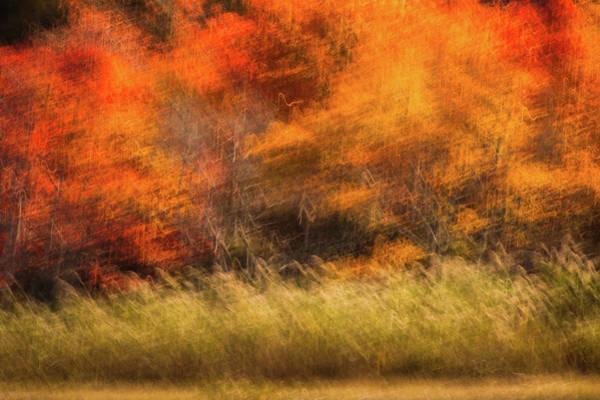 Photograph - Ablaze by John Whitmarsh