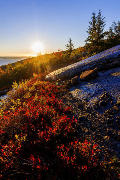Acadia National Park Wall Art - Photograph - Above Bar Harbor by Chad Dutson