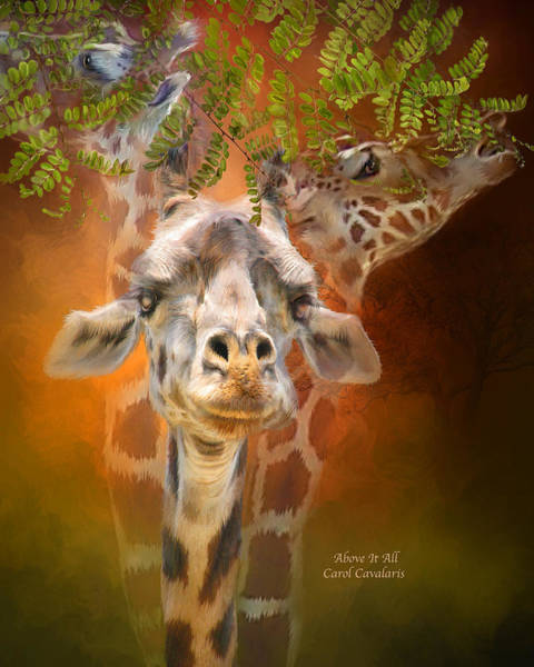 Mixed Media - Above It All by Carol Cavalaris