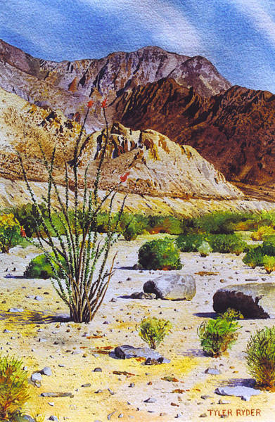 Painting - Above La Quinta by Tyler Ryder