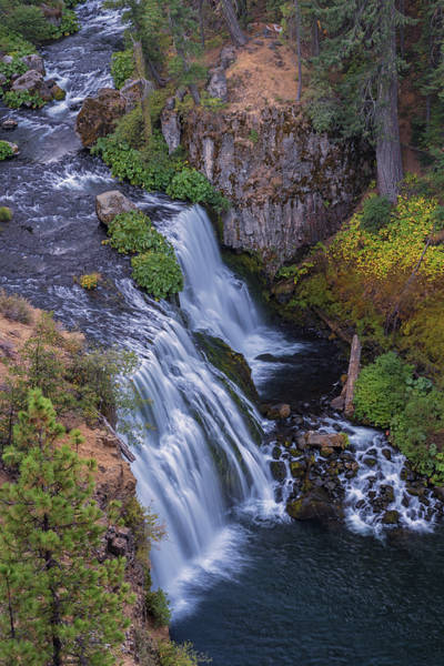 Photograph - Above Middle Falls by Loree Johnson